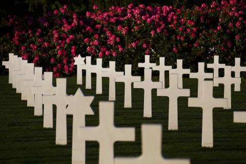Marble headstones are perfectly aligned near flowering bushes.